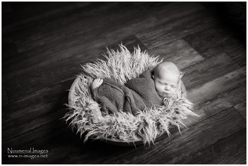 Calgary Newborn Photography - Noumenal Images