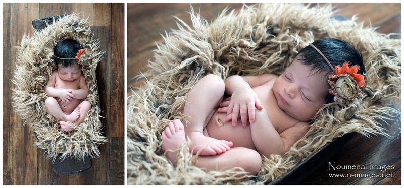 Calgary Newborn Phogotraphy- Noumenal Images