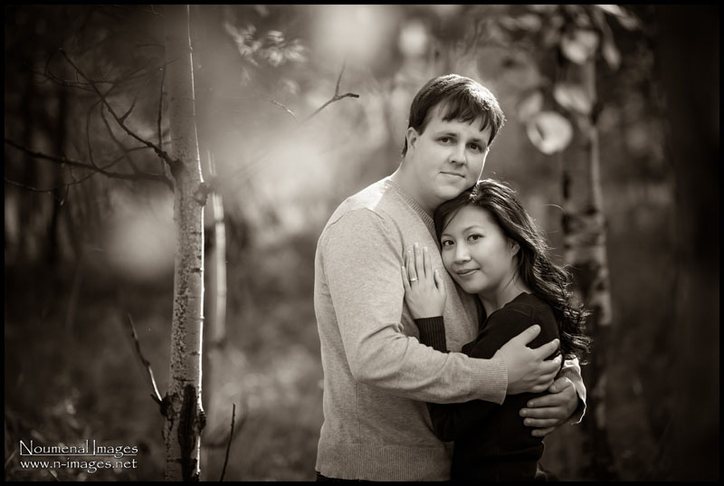 Noumenal Images Engagement Banff